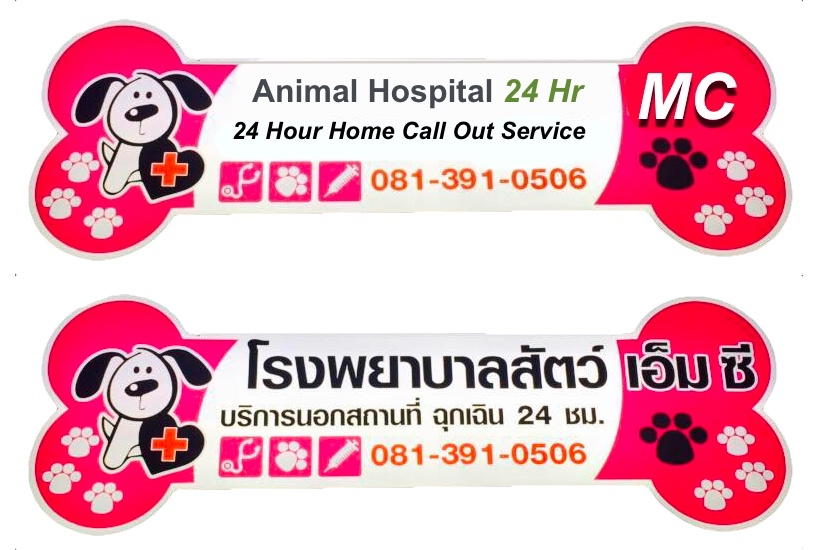 24 hr vets udon thani | 24 hour vet udon thani