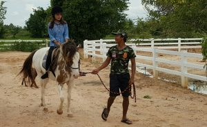 pony trekking in thailand