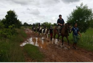 horse riding on the trail udon thani